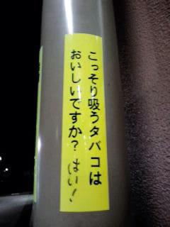 8cc0e981.jpg